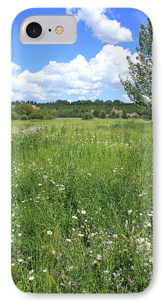 Aspen Tree In Meadow With Wild Flowers IPhone Case by Jim Sauchyn