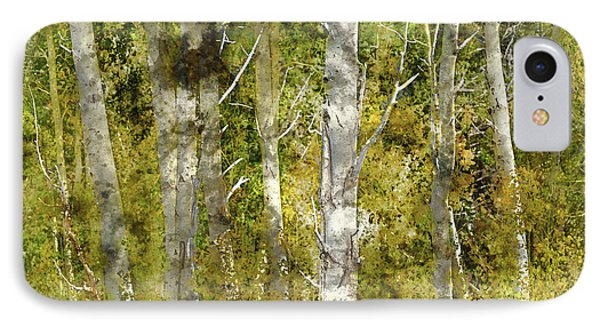 Aspen Trees In The Fall IPhone Case by Brandon Bourdages