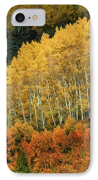 IPhone Case featuring the photograph Aspen Waves by Dana Sohr