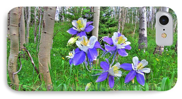 Aspens And Columbines IPhone Case