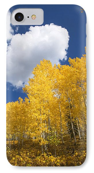 Aspens And Sky IPhone Case by Ron Dahlquist - Printscapes