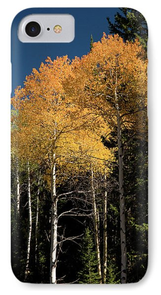 IPhone Case featuring the photograph Aspens And Sky by Steve Stuller