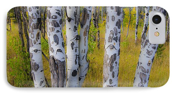IPhone 7 Case featuring the photograph Aspens by Gary Lengyel