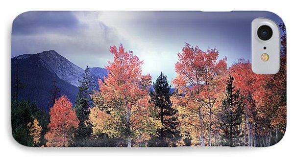 Aspens In Autumn Light IPhone Case by Leland D Howard