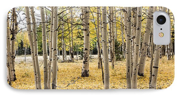 IPhone Case featuring the photograph Aspens In Conejos County In Colorado, Near The New Mexico Border by Carol M Highsmith