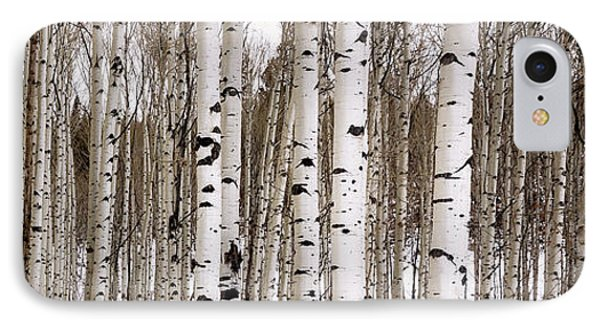 Rocky Mountain iPhone 7 Case - Aspens In Winter Panorama - Colorado by Brian Harig
