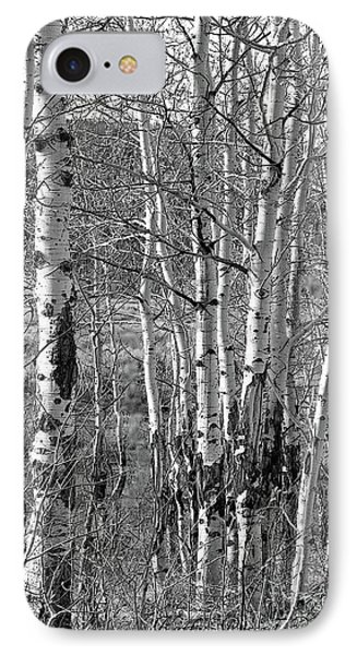 Aspens IPhone Case by Kathy Russell