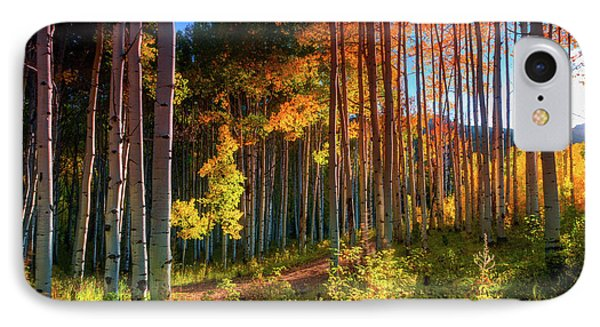 IPhone Case featuring the photograph Aspens Of The West Elk Mountains by John De Bord
