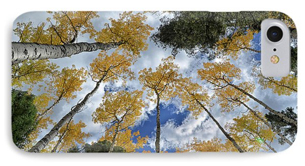 Aspens Reaching IPhone Case by Kevin Munro