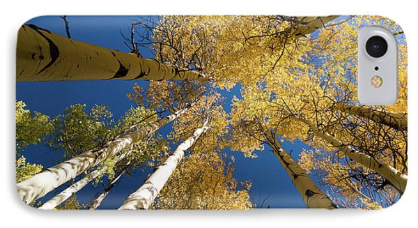 IPhone Case featuring the photograph Aspens Up by Steve Stuller