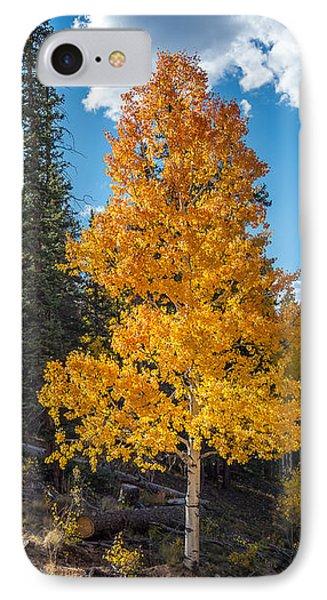 Aspen Tree In Fall Colors San Juan Mountains, Colorado. IPhone Case by John Brink