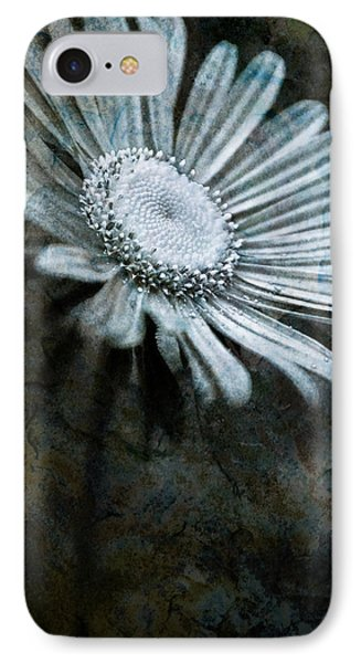 Aster On Rock IPhone Case by  Onyonet  Photo Studios