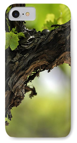 IPhone Case featuring the photograph At Lachish Vineyard by Dubi Roman