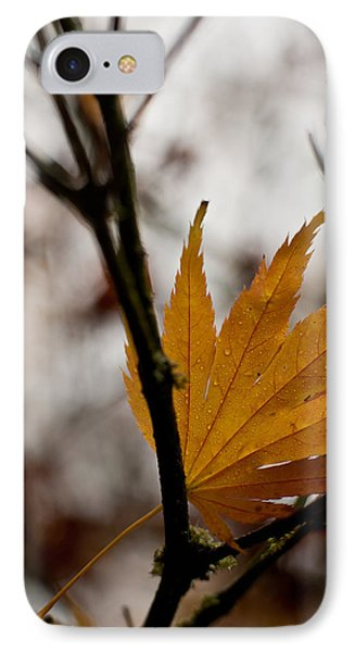 At Rest IPhone Case by Mike Reid