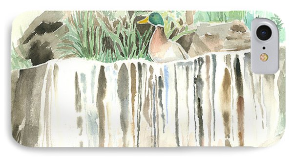 Atop The Waterfall Phone Case by Arline Wagner