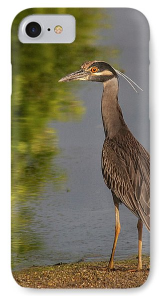 IPhone Case featuring the photograph Attentive Heron by Jean Noren