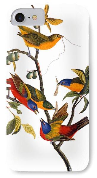 Audubon: Bunting, 1827 IPhone Case