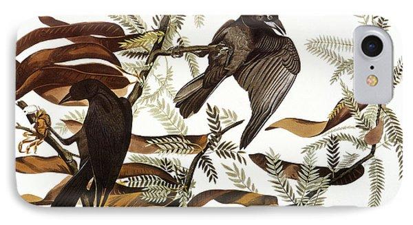 Audubon: Crow Phone Case by Granger