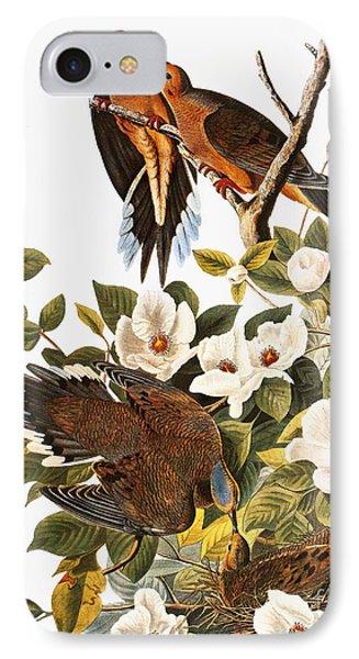 Audubon: Dove Phone Case by Granger