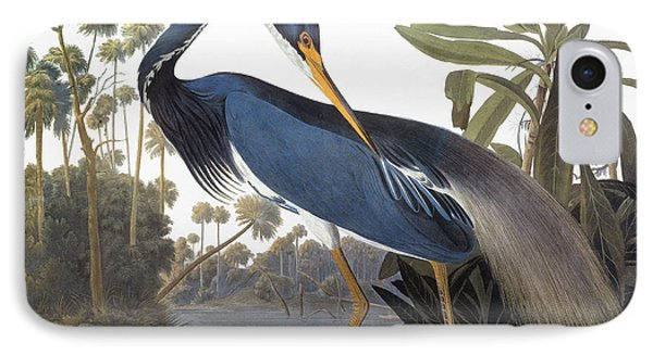 Audubon: Heron, 1827 IPhone Case