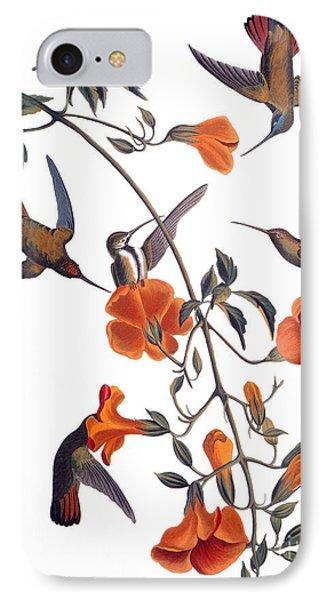 Audubon: Hummingbird Phone Case by Granger