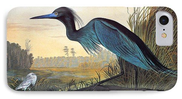 Audubon: Little Blue Heron IPhone Case by Granger