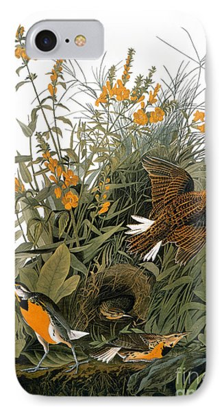 Audubon: Meadowlark IPhone 7 Case by Granger