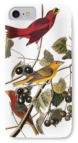 Audubon: Tanager Phone Case by Granger