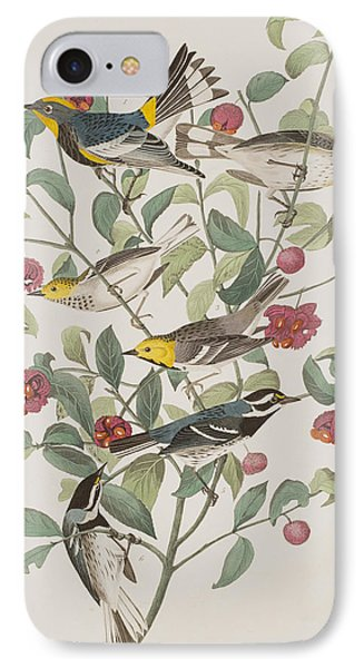Audubons Warbler Hermit Warbler Black-throated Gray Warbler IPhone 7 Case by John James Audubon