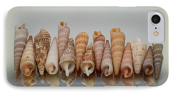 Auger Shells IPhone Case by Patti Whitten