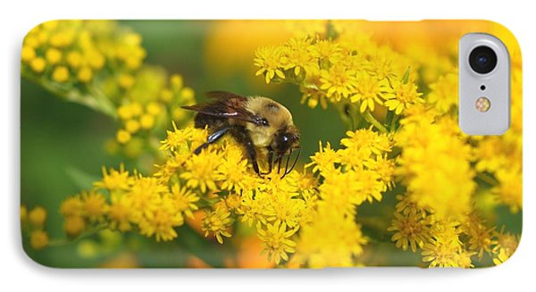 August Bee IPhone Case by Susan  Dimitrakopoulos
