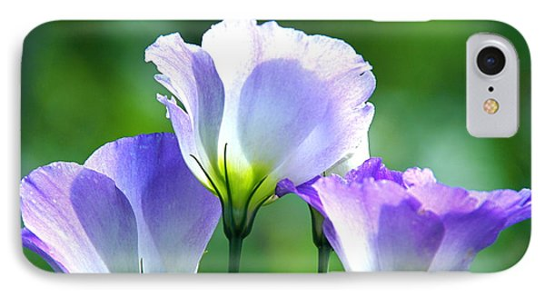 IPhone Case featuring the photograph August Echoes by Byron Varvarigos