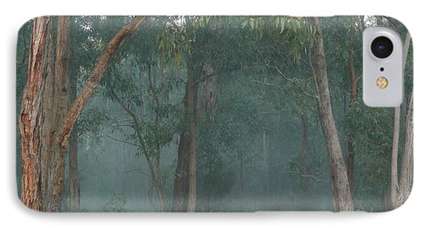 Australian Morning IPhone Case by Evelyn Tambour