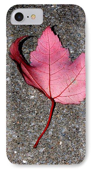 Autum Maple Leaf 2 Phone Case by Robert Morin