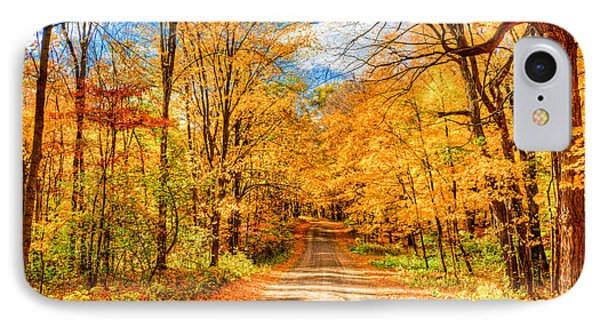Autum IPhone Case by RC Pics