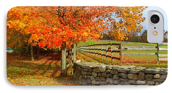 Autumn Afternoon IPhone Case
