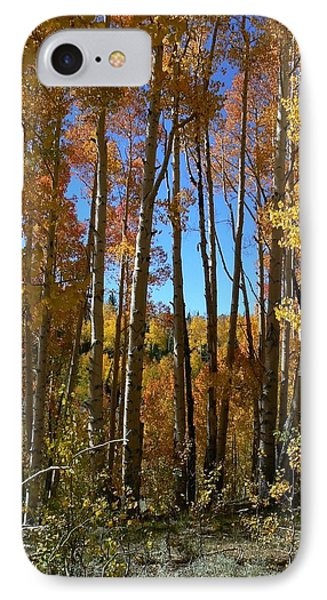 IPhone Case featuring the photograph Autumn Aspen Grove Dixie National Forest Utah by Deborah Moen