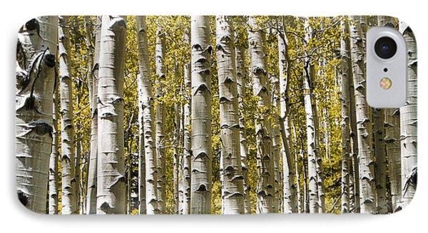 Autumn Aspens IPhone Case by Adam Romanowicz