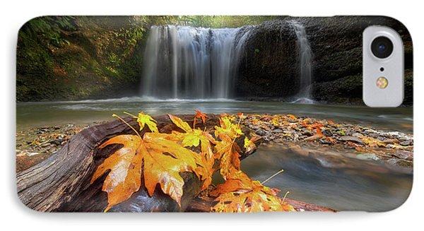 Autumn At Hidden Falls Phone Case by David Gn