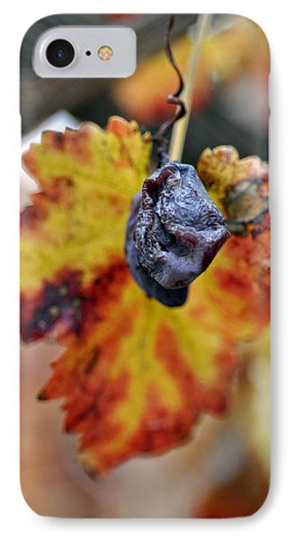 IPhone Case featuring the photograph Autumn At Lachish Vineyards 5 by Dubi Roman