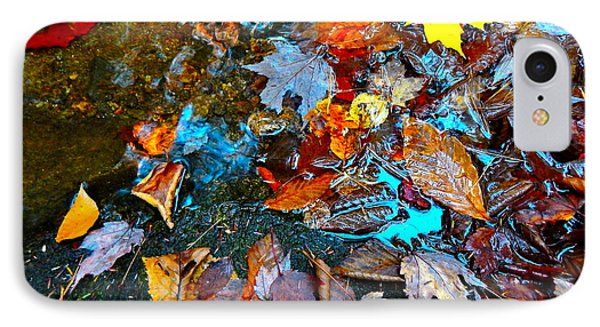 Autumn B 2015 124 IPhone Case by George Ramos