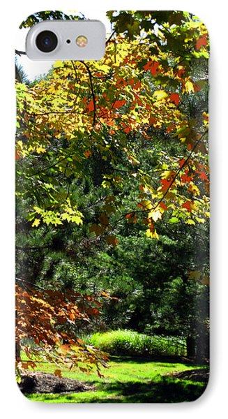 IPhone Case featuring the photograph Autumn Backyard by Joan  Minchak