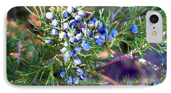 IPhone Case featuring the photograph Autumn Berries by Betty Northcutt