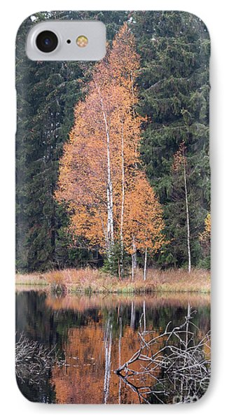 Autumn Birch By The Lake IPhone Case by Michal Boubin