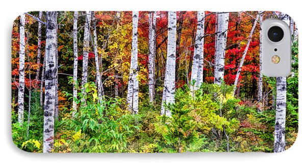 IPhone 7 Case featuring the painting Autumn Birches by Christopher Arndt