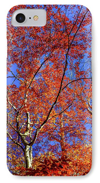 IPhone Case featuring the photograph Autumn Blaze by Karen Wiles