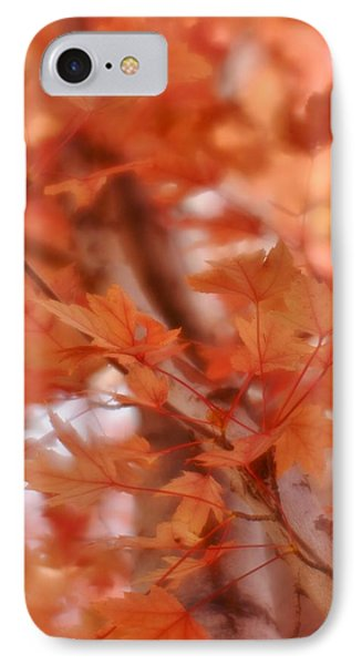 IPhone Case featuring the photograph Autumn Blush by Diane Alexander