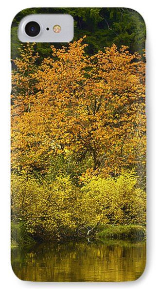 IPhone Case featuring the photograph Autumn Brilliance by Diane Schuster