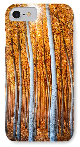 IPhone Case featuring the photograph Autumn Canopy Burst by Dan Mihai