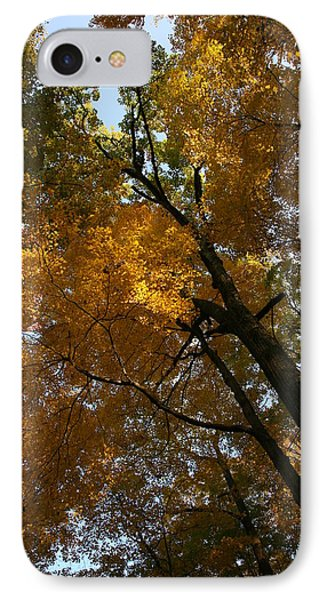 IPhone Case featuring the photograph Autumn Canopy by Shari Jardina